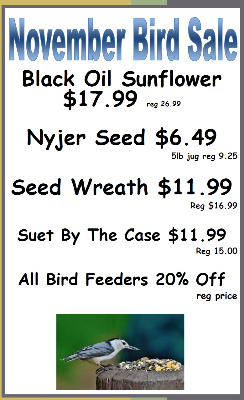 November Bird Food Sale